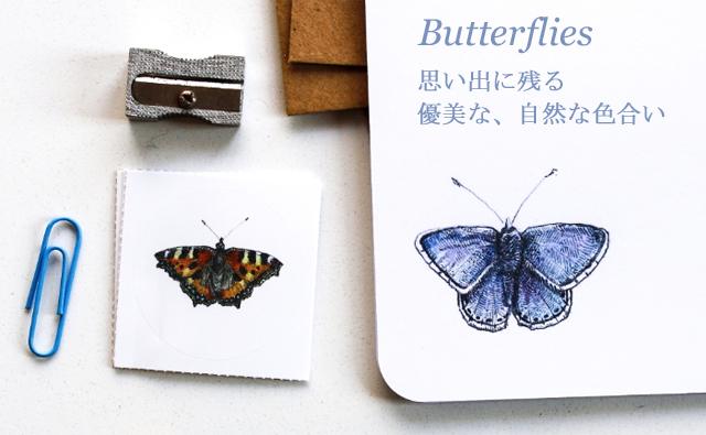 蝶 レターセット