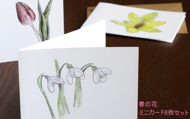 春の花 ミニカード