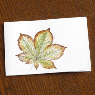 ミニカード 葉